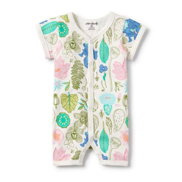 https://harryhoot.com.au/wp-content/uploads/2018/09/Flora-Short-Sleeve-Open-Front-Growsuit.jpeg.jpg