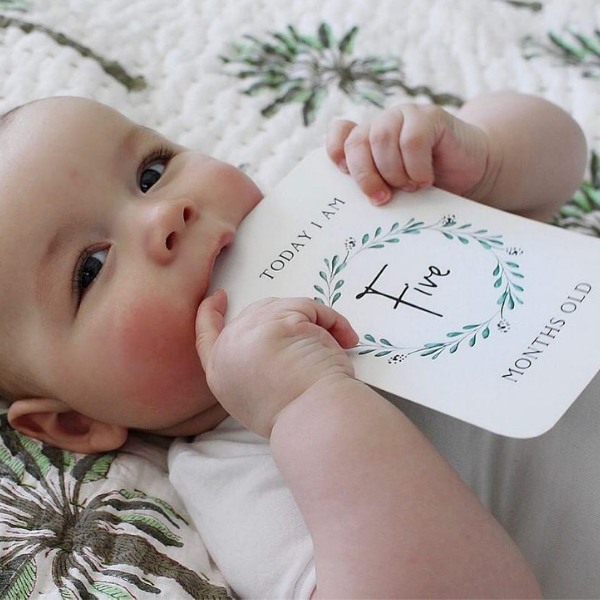 Baby Milestone Cards_Today I Am Five Months__Harry Hoot